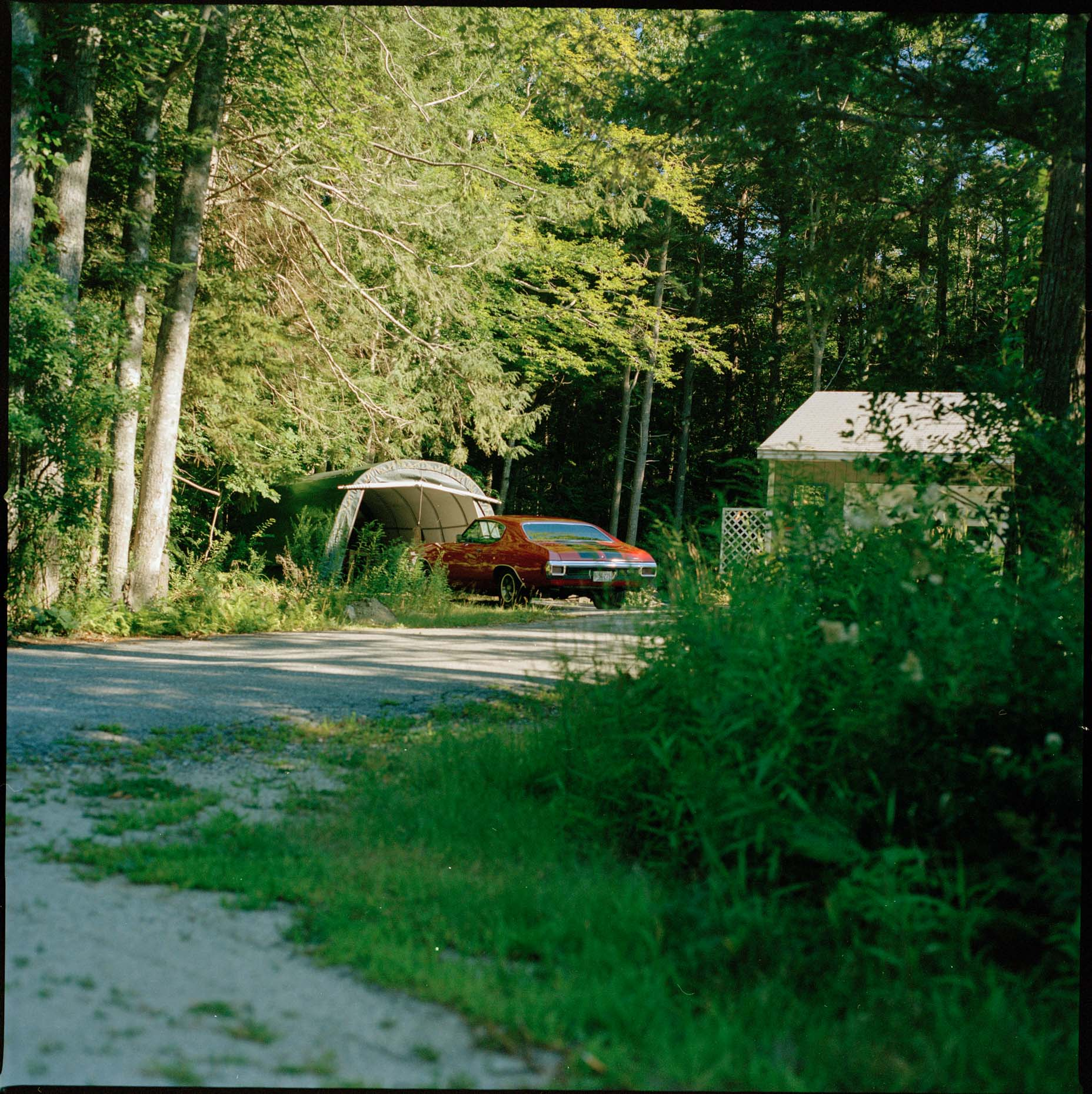 A vintage sports car sits in a driveway surrounded by green foliage, somewhere in Maine, USA