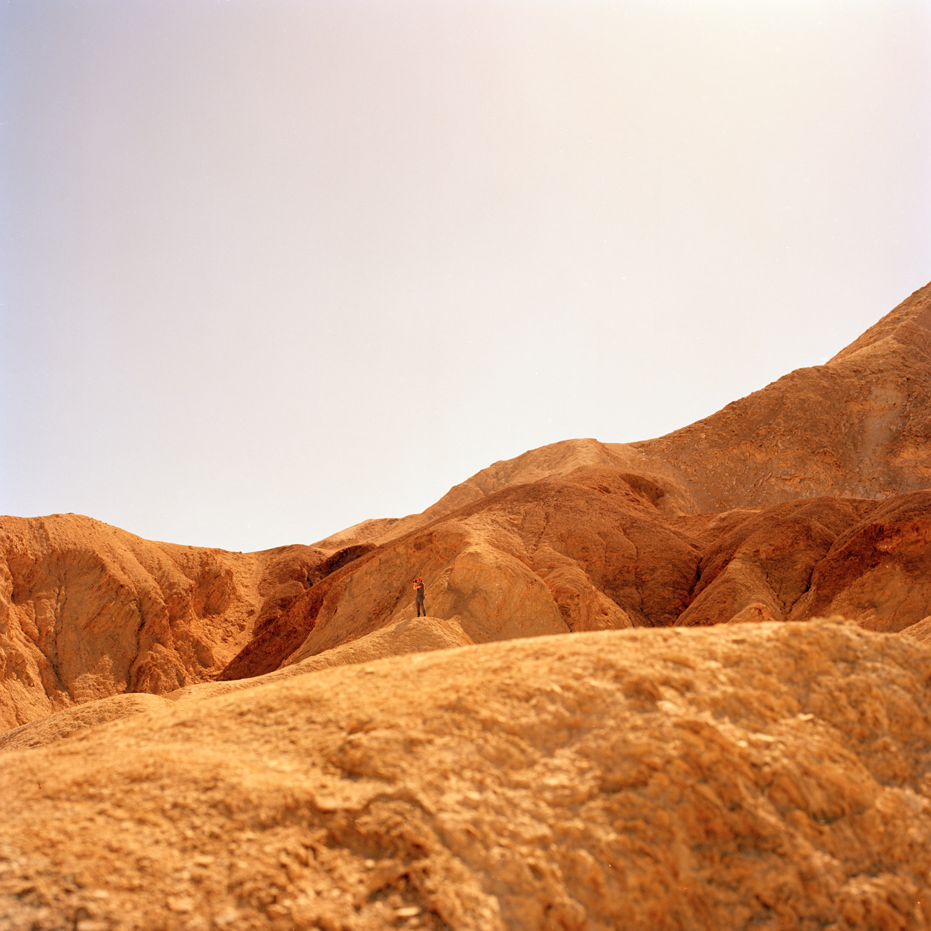 Golden rocks bake in the desert sun at Zabriskie Point, Death Valley in California.